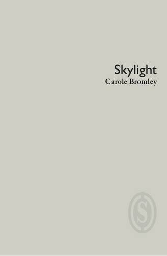 Read Online Skylight pdf epub