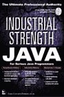 img - for Industrial Strength Java book / textbook / text book