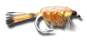 Tied Down Caddis – Down Pack イエローフライ釣りフライ Size 14 - - 12 Pack B00KD8QFQW, 神戸ロングテール:38cac1b5 --- sharoshka.org