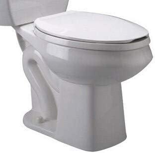 (K) Z5560 Elongated Toilet Bowl Only Modern Contemporary Porcelain