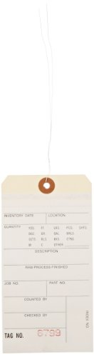 (Aviditi G15143 Pre Wired 2 Part Carbonless #8 Inventory Tag, 6-1/4
