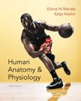 Human Anatomy & Physiology Book W/ A&P Online Access, Lab Manual, & Photo Atlas   Hardback Pkg
