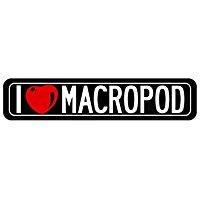 I Love Macropod sign 2 - Animals - Street Sign [ Decorative Crossing Sign Wall Plaque ] (Macropod Animals)