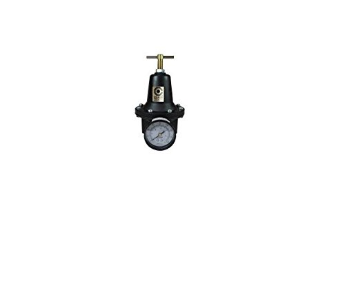 Coilhose Pneumatics 8808G Heavy Duty Series Regulator, 1-Inch Pipe Size with Gauge