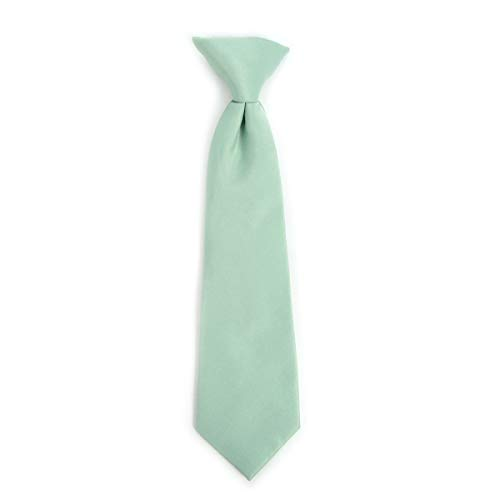Boy's Solid Clip on Tie (14 inch, Mint)
