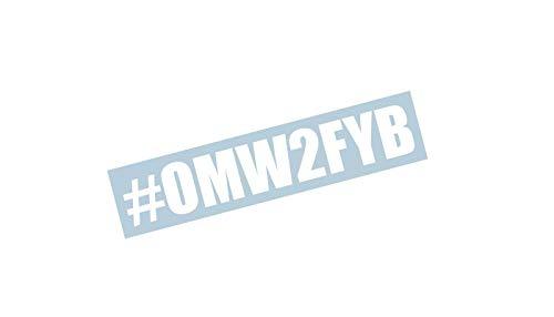 - Xpin Graphics OMW2FYB Vinyl Decal 23