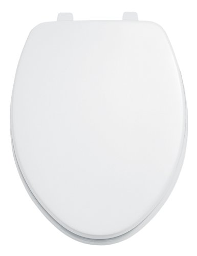 Most Popular Commercial Toilet Seats