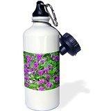 Wild Bramble Sandy Mertens Flower Designs - Wood Violets Sports Water Bottle 21 Oz Twin Sides