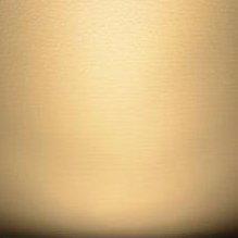 Bonlux Dimmable T10 Tubular LED Light Bulb