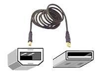 Belkin F3U133-10-GLD 10ft USB 2.0 A/b Device - 10ft