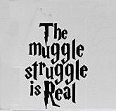 Muggle Struggle Potter Sticker Trucks product image