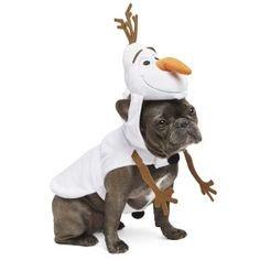 Disney Pet Halloween Frozen Olaf Dog Costume Medium  sc 1 st  Amazon.com & Amazon.com : Disney Pet Halloween Frozen Olaf Dog Costume Medium ...