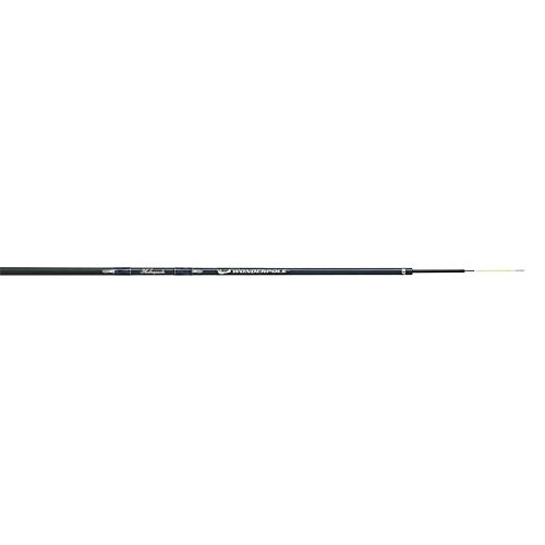 Shakespeare TSP20 Six-Piece Wonderpole Fishing Rod, 20 Feet, Light Power
