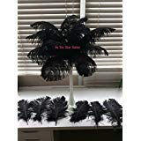 Special Sale Ostrich Feathers Wholesale Bulk 13/16'' Long Deluxe Tail Feathers Black Qty 100 for Eiffel Towers by Six Star Sales