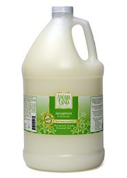 Aromaland Natural Shampoo (Aromaland - Tea Tree and Lemon Shampoo (1 Gallon))