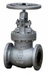 "2"" Newco 02-23F-CB2 Globe Valve 300 RF Cast Steel from Newco"