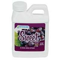 Sweet Berry - 4