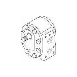 New Hydraulic Gear Pump 93835C92 Fits 248 380B CX100