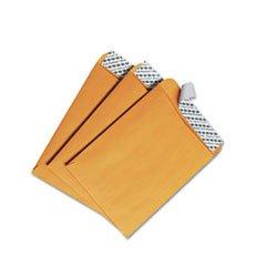 * Redi-Strip Catalog Envelope, 6 x 9, Brown Kraft, 100/Box