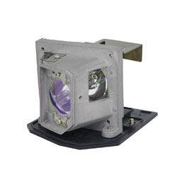 (Replacement for Batteries and Light Bulbs SP-LAMP-050 Projector TV Lamp Bulb)