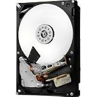 HGST Ultrastar 7K6000 HUS726060AL4210 6 TB 3.5 Internal Hard Drive