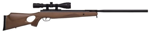 Benjamin Trail NP XL 725 Break Barrel Air Rifle (.25) powered by Nitro Piston (Air Barrel Rifle Cal)