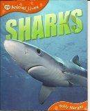 - Sharks QEB Animal Lives