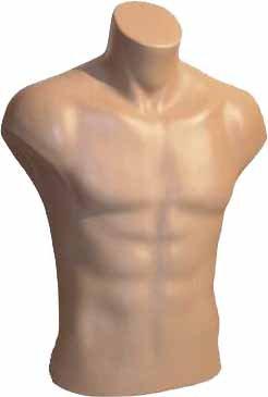 Male Torso Dress Form Mannequin Display Bust Nude (#5027) by Only MannequinsÂ