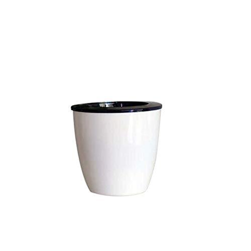 Auntwhale Ronda Blanco Mini Maceta suculenta pequeña Planta de Cactus Maceta Bonsai Creativo Lindo macetas Regalo Perfecto...