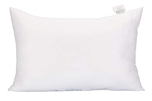 Acanva Bed Sleeping Extra-Soft Sham Pillow Insert, King 20x36, White