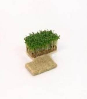 Woven Earth Natural Hemp Grow Mat, 20