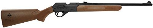 daisy target rifle - 6