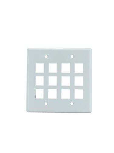 (Legrand - On-Q WP3212WH 2Gang, 12Port Wall Plate, White)