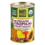 Native Forest Tropical Fruit Salad Organic, 14-Ounce (Pack of 6)