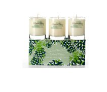 Roland Pine Pure Soy Candle Votive Gift Set The Soap & Paper Factory HG-VRP