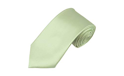 Solid Light Sage Green Slim Men's ()