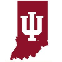 NCAA Indiana Hoosiers - 3 Large Wall Accent College Murals