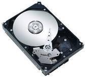 Seagate ST3500320NS. 500 Gigabyte SATA 3G Enterprise Storage 7200 rpm 32MB Cache Bare Drive