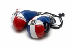 Dominican Republic Car - Mini Boxing Gloves - Dominican Republic.