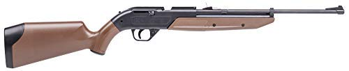 Crosman 760 Pump Master Variable Pump BB Repeater/Single Shot Pellet Rifle (Most Powerful 22 Air Rifle On The Market)