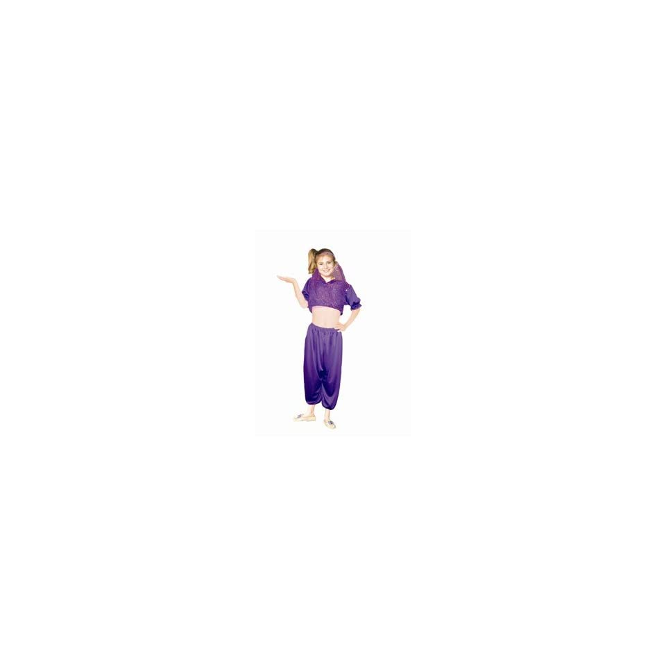 Harem Girl   Purple Sequined, Child Small Costume
