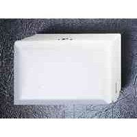 WHITE SINGLEFOLD PAPER TOWEL DISPENSER 1/CS