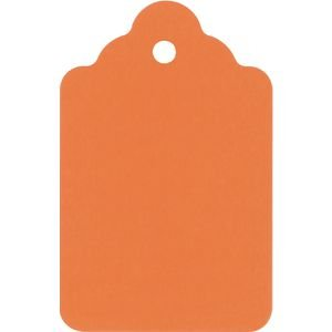 Orange Fluorescent Price Tags, Pack of 1000