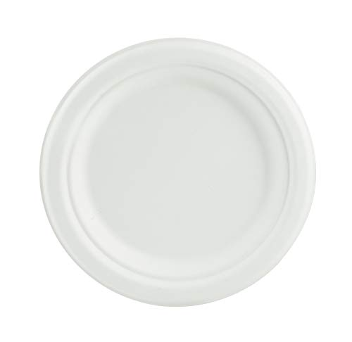 Compostable Dinner Plates, 7 Inch, Round, White, Food Service, 500 -