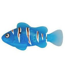 Robo Fish: Blue Electronic 3-inch Clownfish