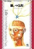 脳がつくる形 (形の文化誌 (2))
