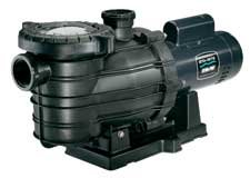 Pentair Sta-Rite MPRA6G-207L Dyna-Pro Standard Efficiency Single Speed Up Rated Self-Priming Pool and Spa Pump with Easy Off Lid, 2 HP, 230-Volt ()