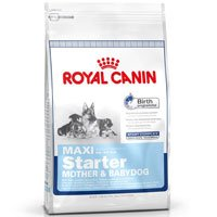 Royal Canin Maxi Starter Mother and Babydog, Dry Dog Food Formula, 26-Pound Bag, My Pet Supplies