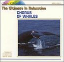 OFFicial shop Chorus of 2021 model Whales