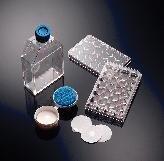 CORNBIO - Corning BioCoat Poly-L-Lysine 35 mm TC-Treated C ult Dish, CS20